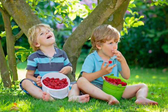 Donosimo 5 načina da poboljšate zdravlje probavnog sustava svog djeteta