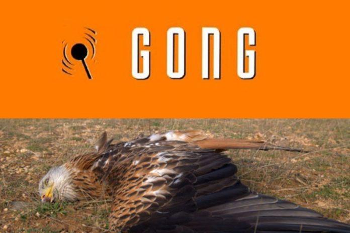 Četvrti slučaj: GONG-ov portal cenzurirao Narod.hr jer ne zastupa poziciju Greenpeacea